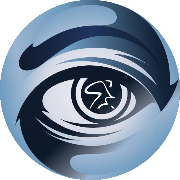 Logo del Low Vision Spinning Program.