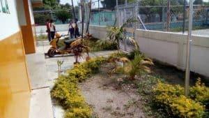 Jardín de FUNDASEB y al fondo el personal de la fundación.